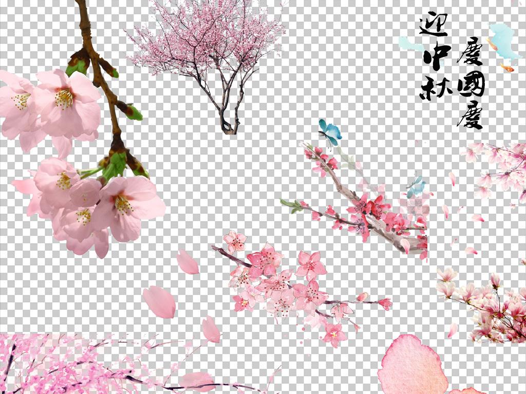桃花樱花素材小樱花樱花梅花梅花樱花手绘花粉色花花粉色花朵桃花樱花