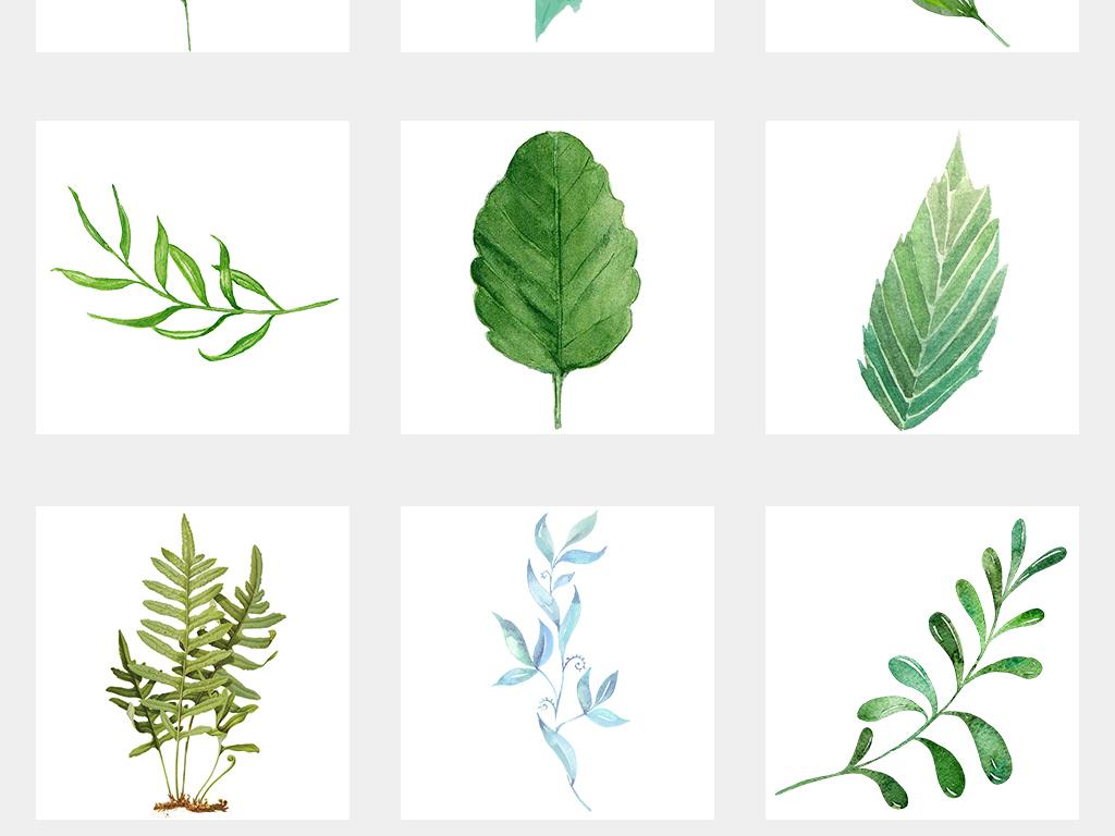 清新北欧美式手绘插画水彩绿植设计背景素材图片_psd