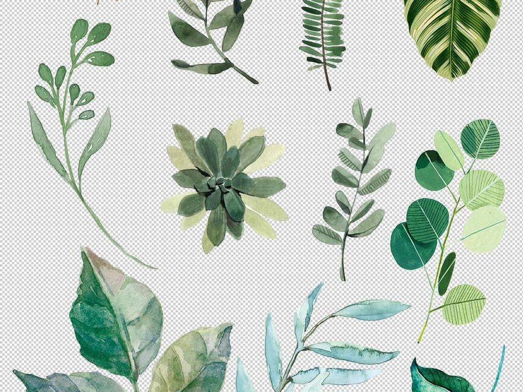 清新北欧美式手绘插画水彩绿植设计背景素材