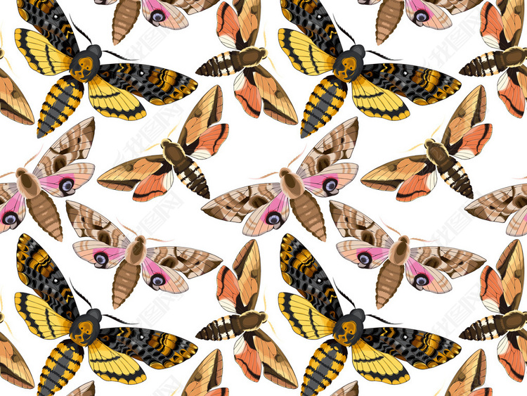 新款手绘蝴蝶无缝图