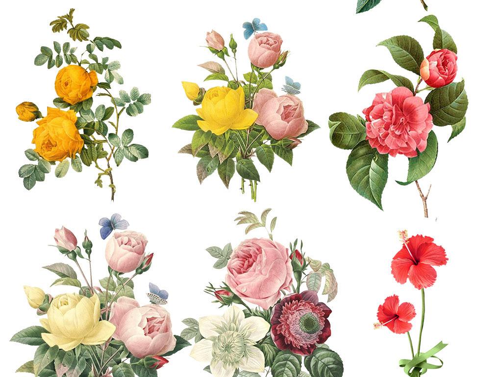 植物图片卡通花朵背景花朵卡通图卡通花朵可爱卡通小花朵图案唯美手绘