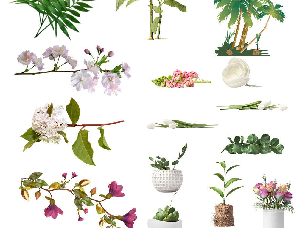 图案唯美手绘花卉花卉素材手绘花卉花草花卉花朵手绘花朵彩绘手绘素材