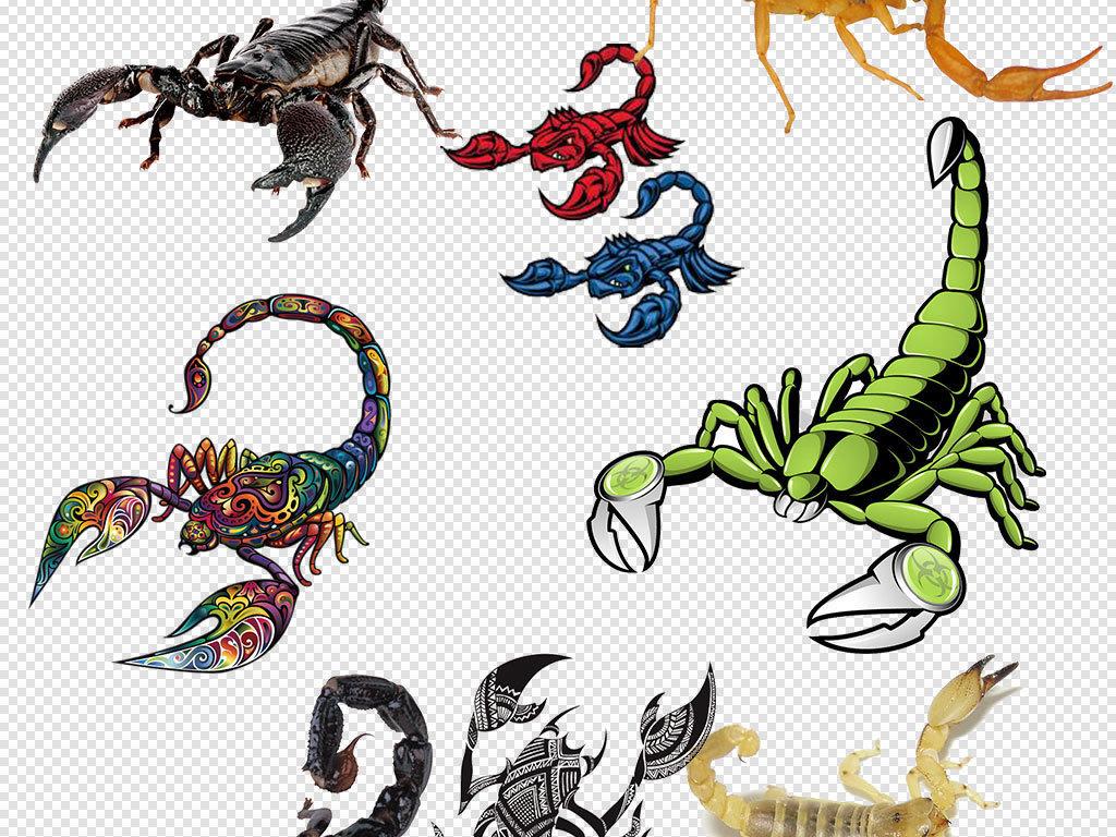 手绘画蝎子红色蝎子透明元素
