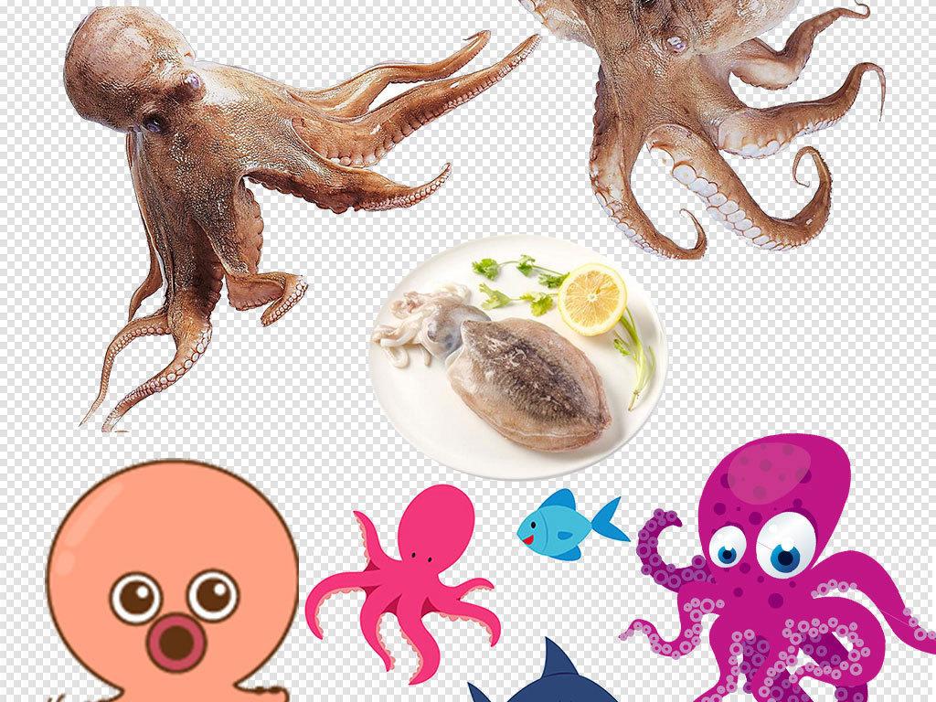 卡通海洋生物章鱼海龟png元素