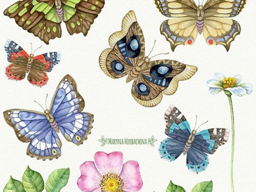 韩式花纹古典花纹植物手绘手绘花朵植物元素蝴蝶花卉昆虫pngpsd素材水