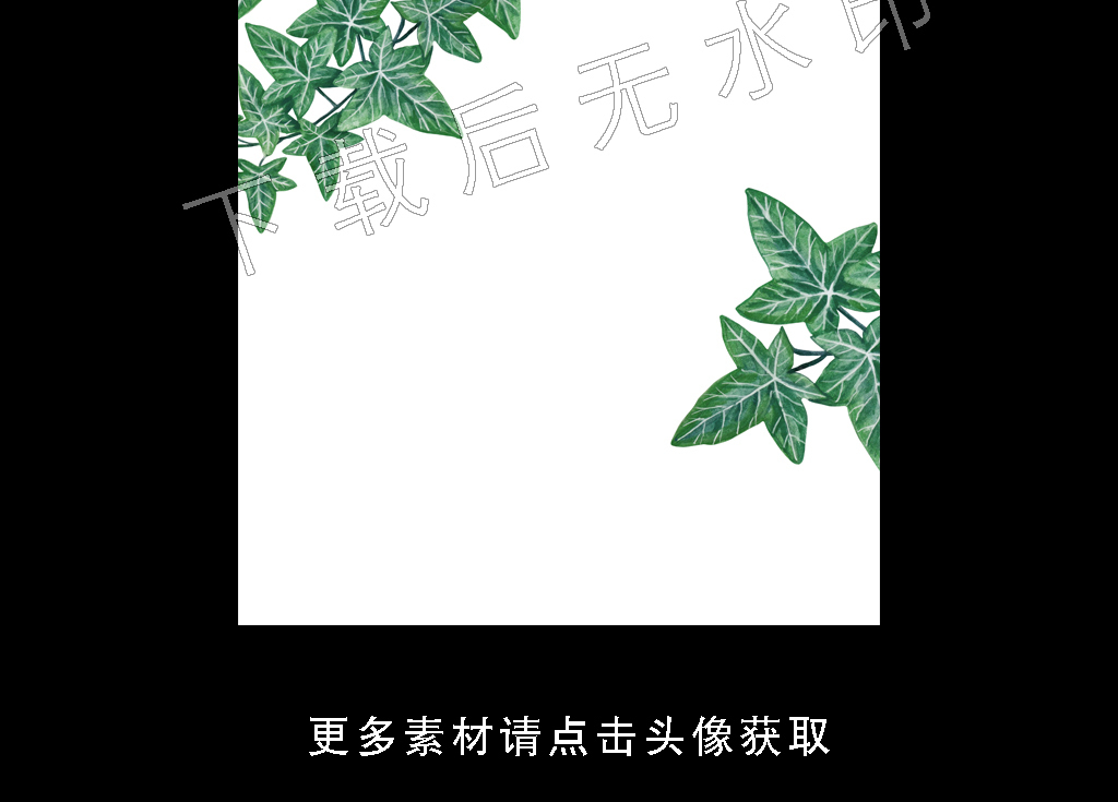 背景墙|装饰画 无框画 植物花卉无框画 > 高清简约小清新北欧植物叶子