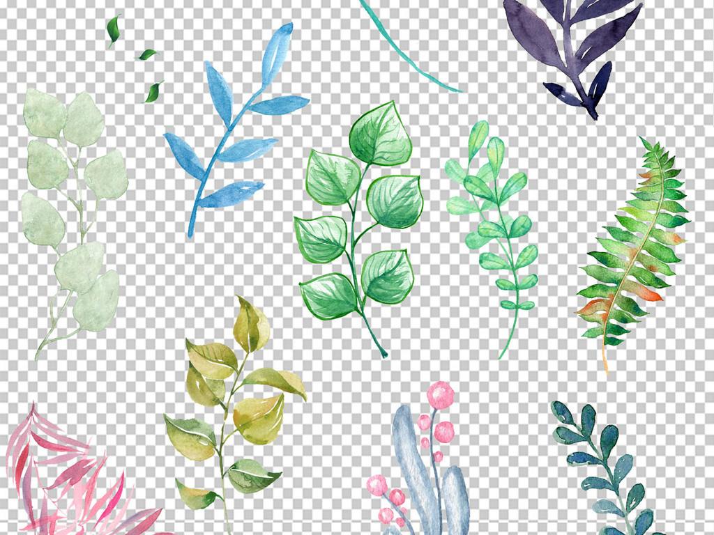 手绘小清新背景花卉水彩素材水彩花卉水彩植物png透明背景透明花卉