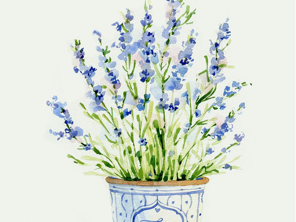 现代北欧手绘盆栽花卉小清新植物装饰画