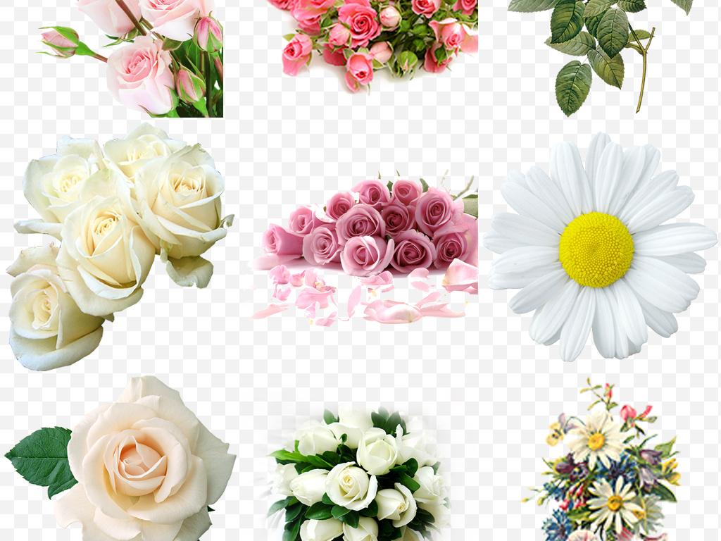 手绘玫瑰鲜花花束康乃馨百合手捧花png