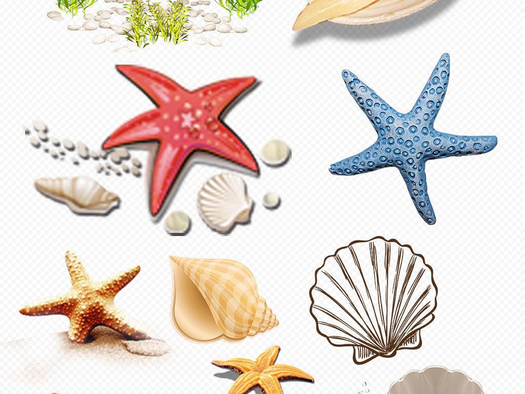 蓝色贝壳海星珊瑚水彩海底世界png透明