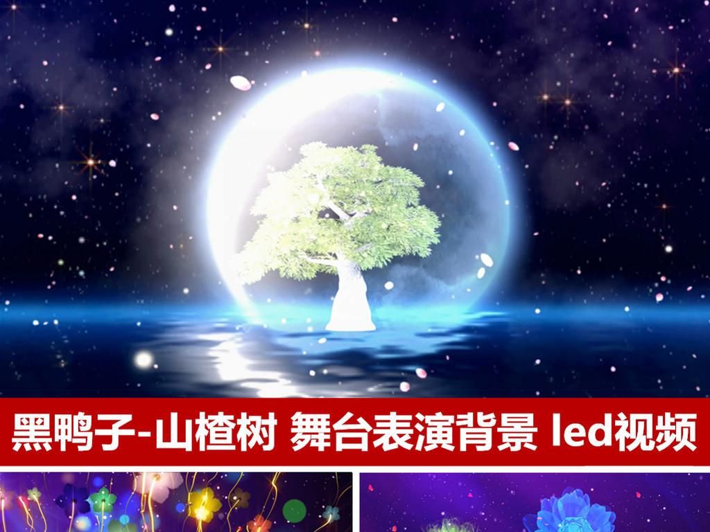 黑鸭子乐队歌曲山楂树舞台表演背景led动态视频