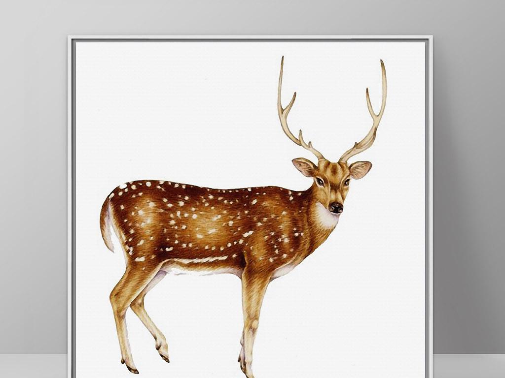 神秘梅花鹿北欧手绘动物欧式现代家居装饰画