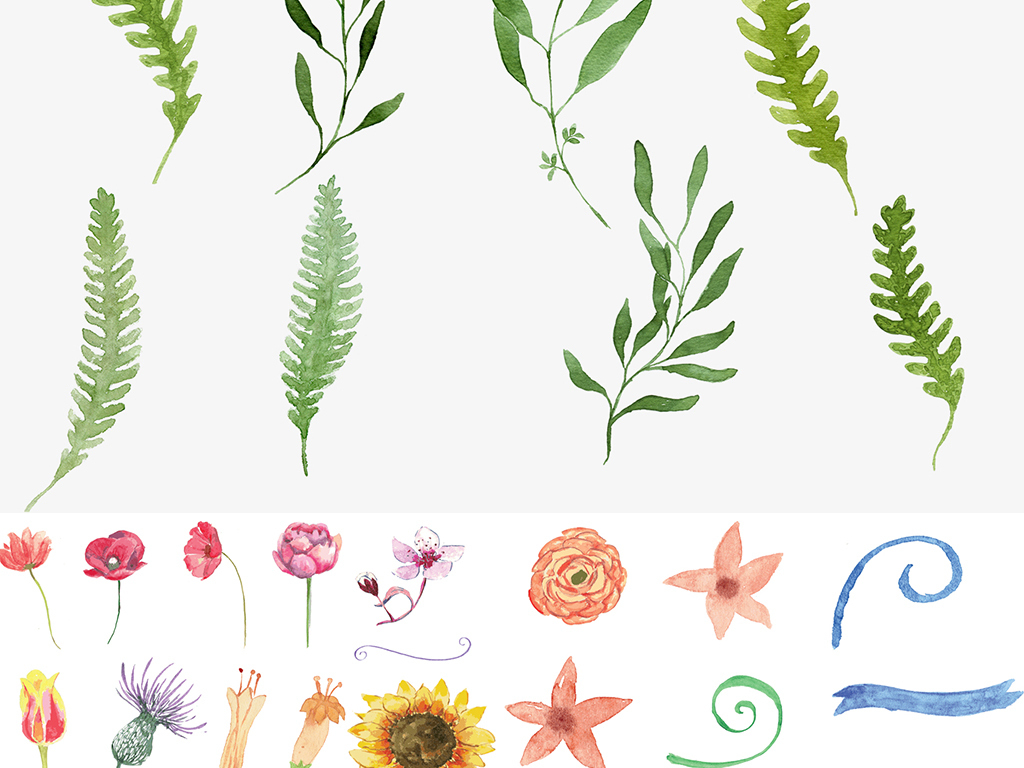 美手绘水彩森系花草手帐矢量免抠图片下载eps素材 花卉
