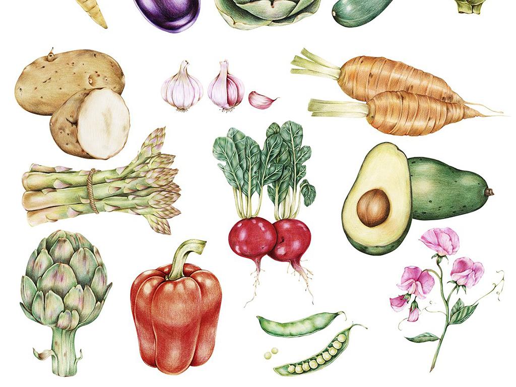 高清写实彩铅手绘新鲜蔬菜图案边框设计元素