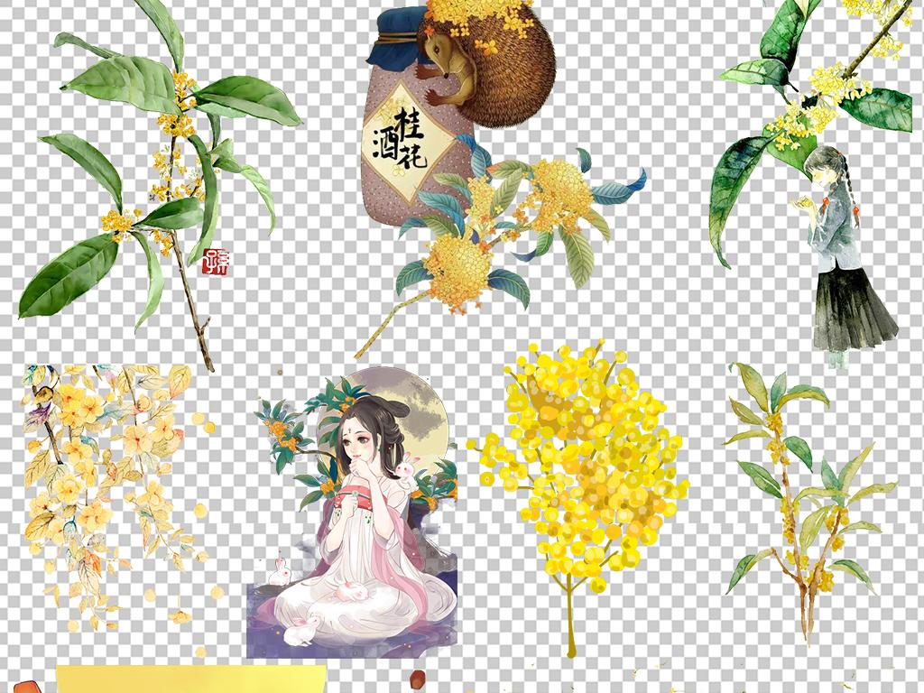 唯美手绘桂花植物图片鲜花素材