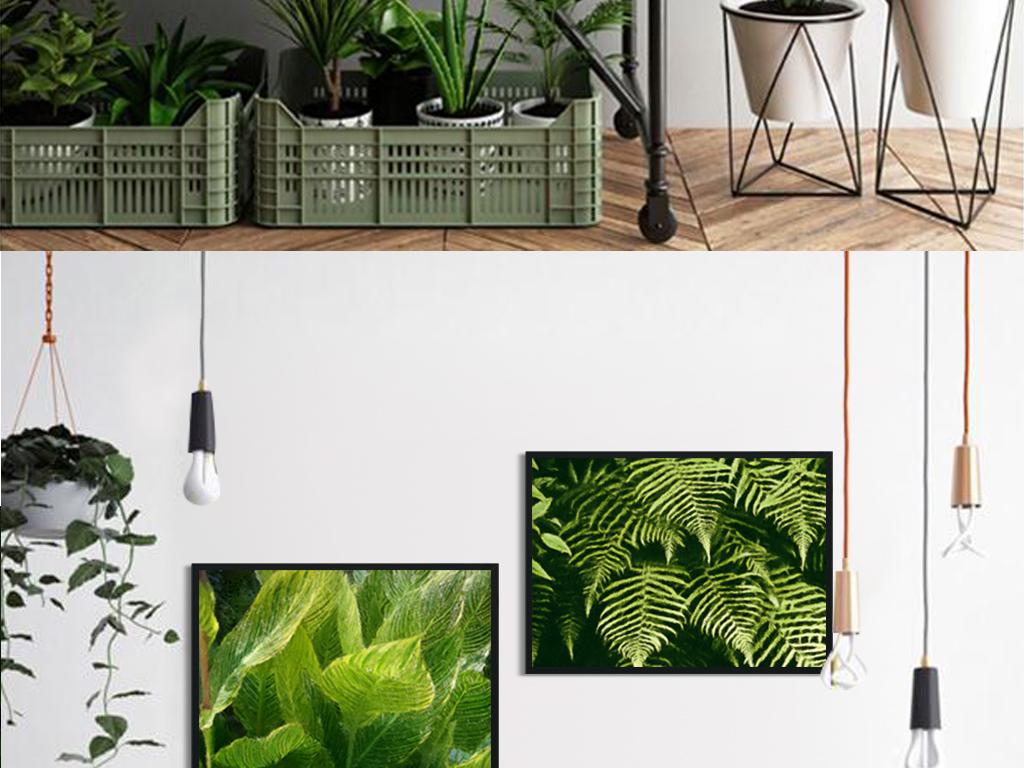 现代饰画热带植物叶子装饰画无框画