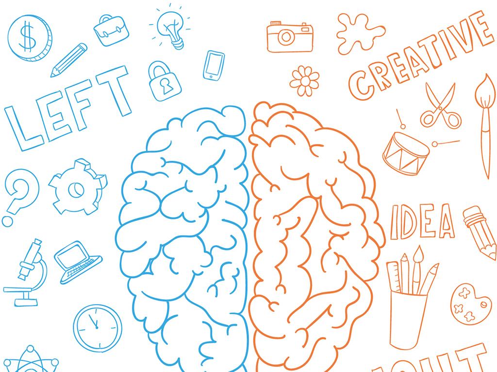 人体大脑简笔画图片