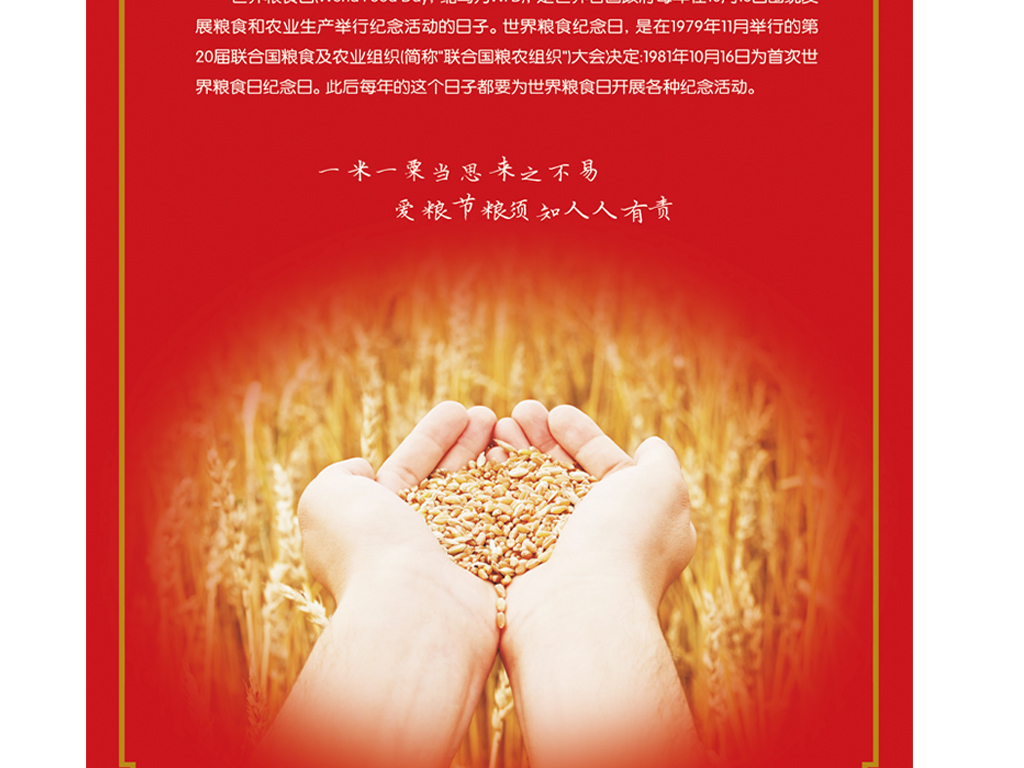 世界粮食日爱粮节粮海报模板图片