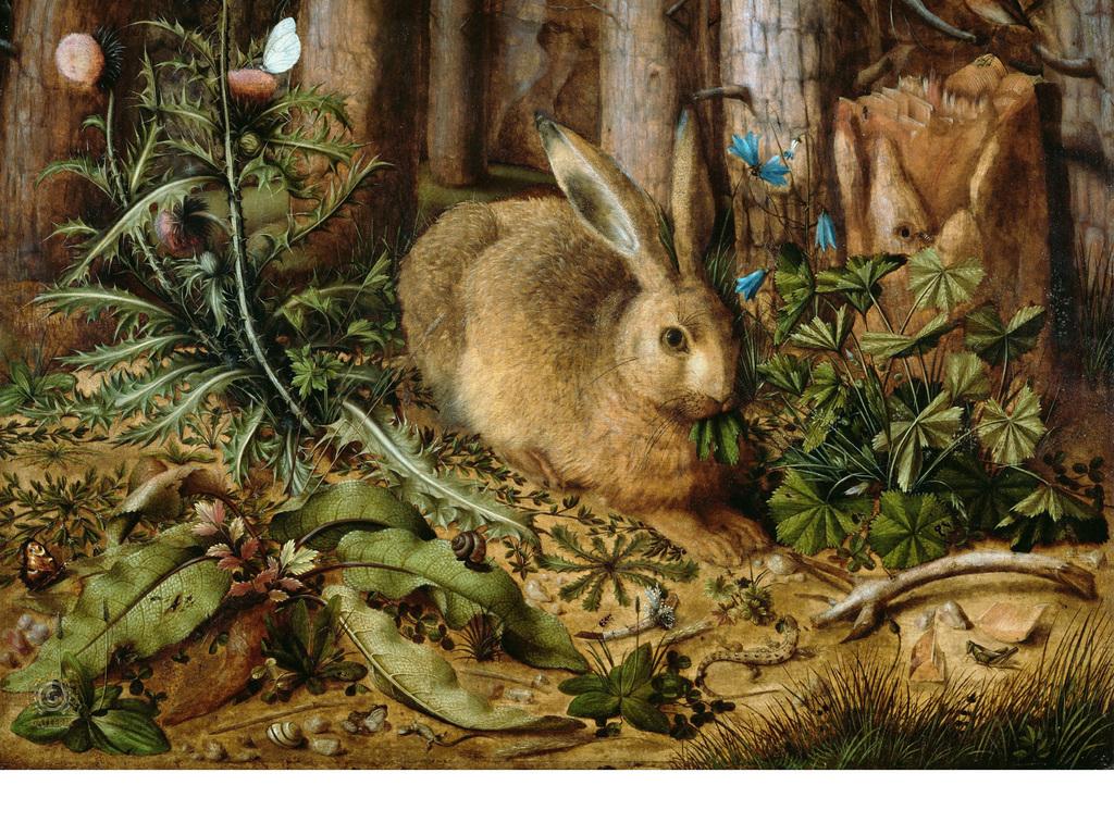 背景墙 电视背景墙 电视背景墙 > 欧式手绘复古兔子  素材图片参数