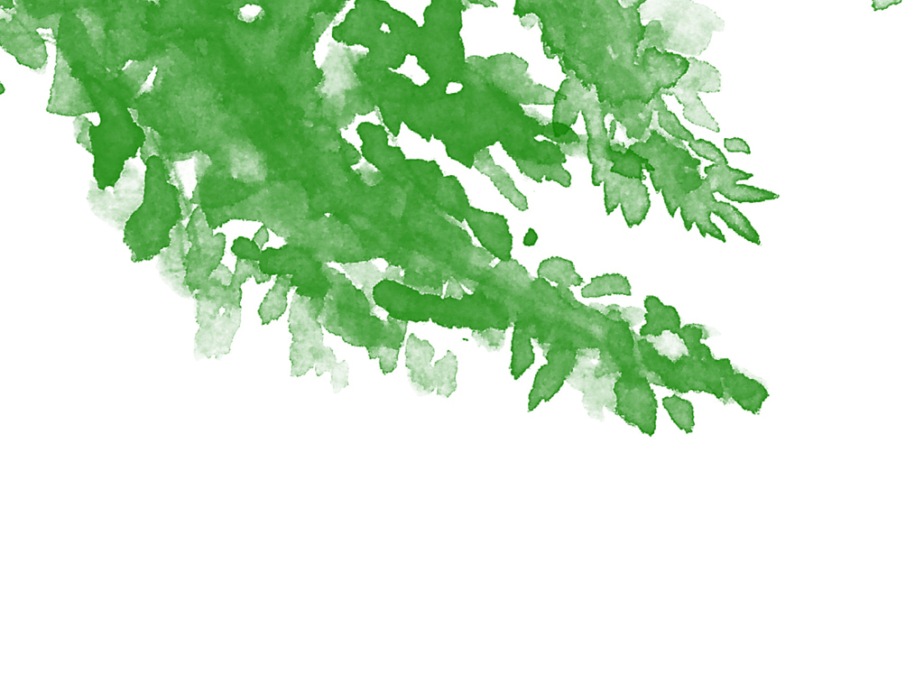 清新简约手绘水彩绿色植物装饰画