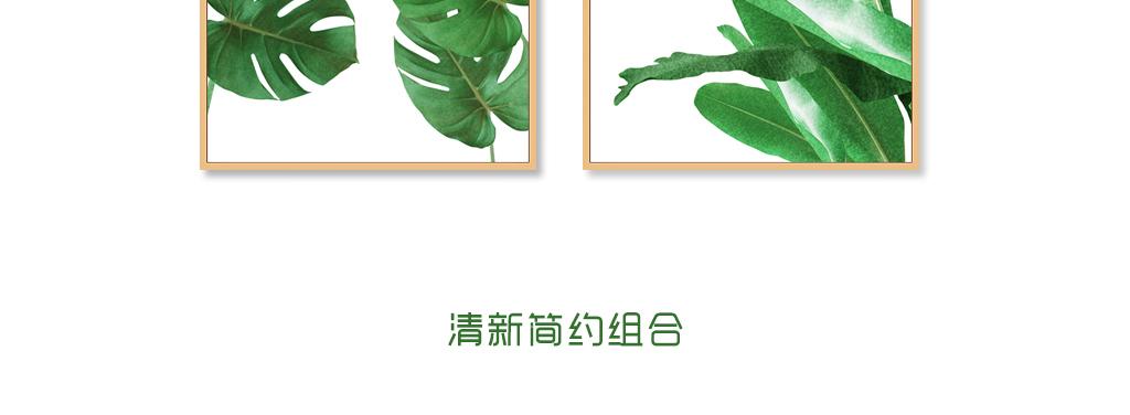 背景墙 装饰画 无框画 植物花卉无框画 > 北欧清新热带植物龟背叶绿色