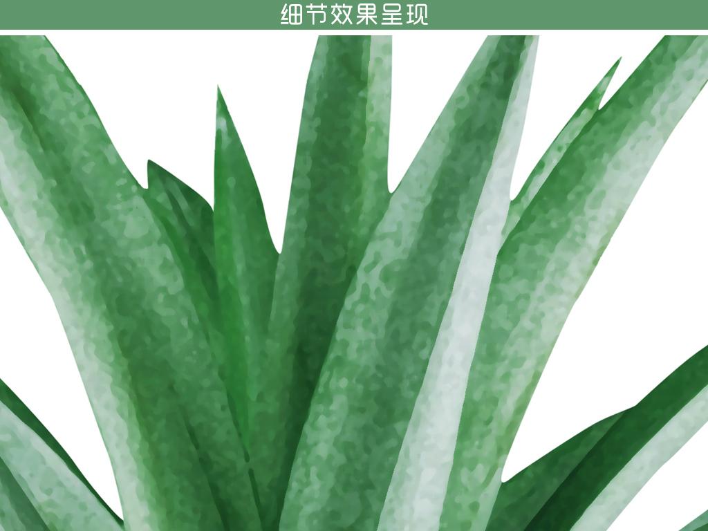 北欧清新热带植物叶子芦荟装饰画