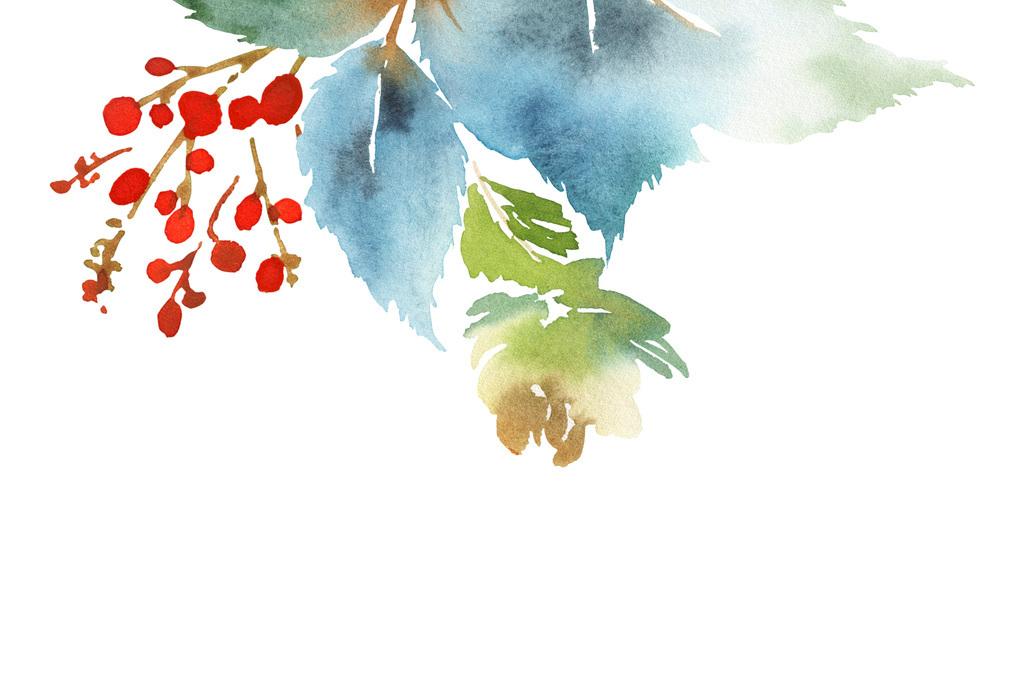 原创手绘水彩榭寄生圣诞节植物花环图案设计元素
