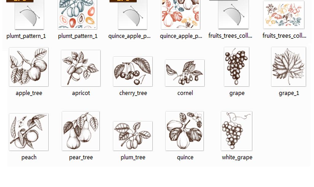 手绘素描线描水果葡萄李子梨木瓜樱桃四方连续无缝背景矢量素材