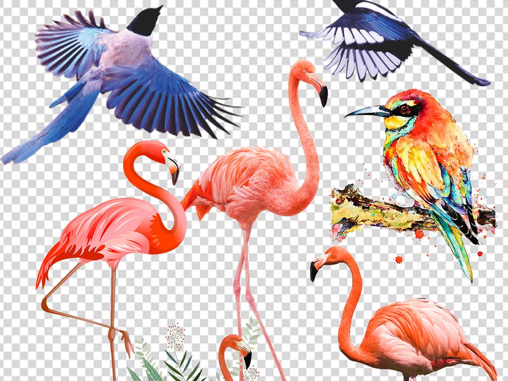 水彩手绘鸟类火烈鸟小鸟麻雀png免扣图片