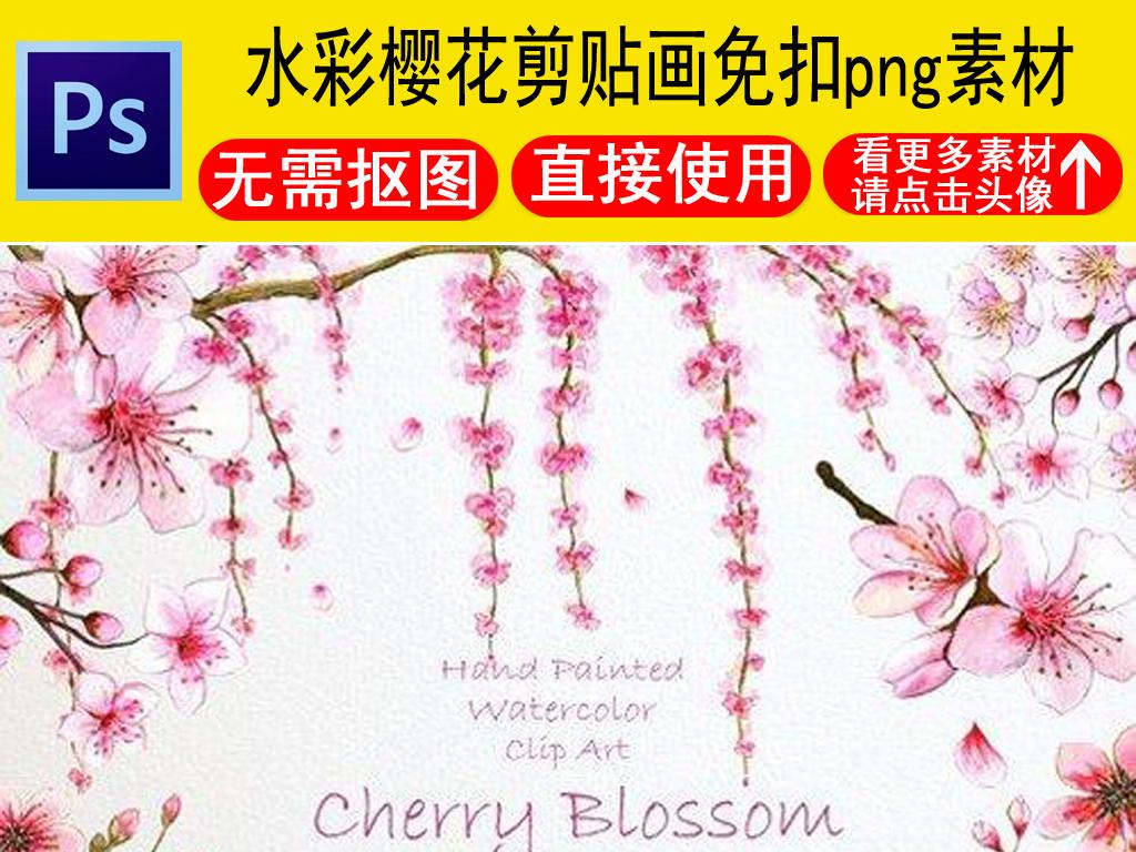 手绘水彩樱花剪贴画免抠png素材图片下载png素材 花卉