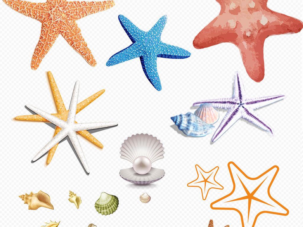 卡通鱼类海洋动物水草贝壳png素材