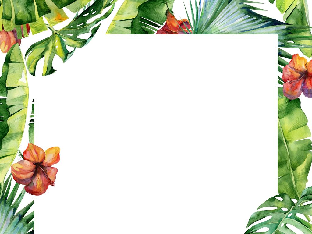 水彩手绘森系热带雨林火烈鸟植物设计元素