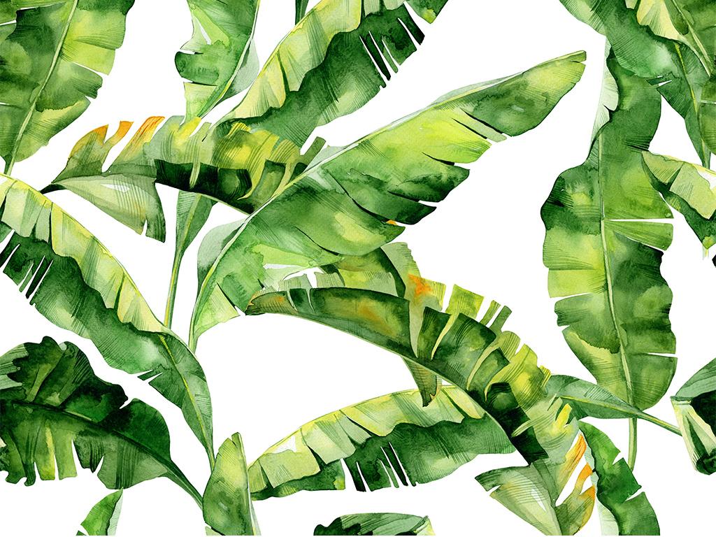 免抠元素 自然素材 树叶 > 水彩手绘森系热带雨林火烈鸟植物设计元素