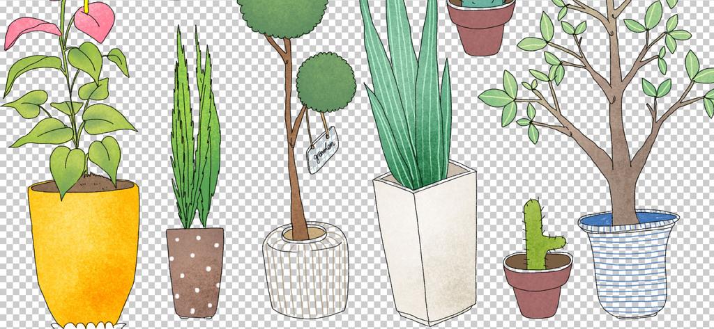 0241植物花朵卡通手绘植物手绘盆栽仙人掌小清新免抠素材
