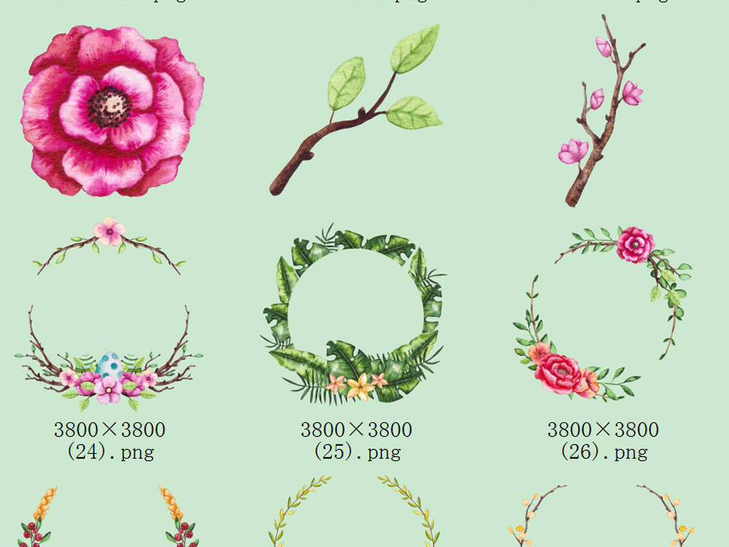 水彩手绘萌宠狗,熊,花环,彩旗,花边边框,花卉植物图案
