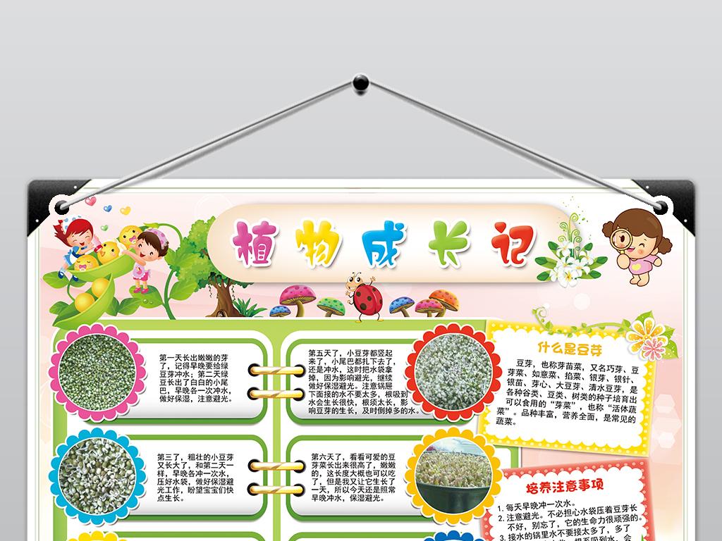 手抄报|小报 环保手抄报 爱护动植物手抄报 > 植物成长观察日记植物