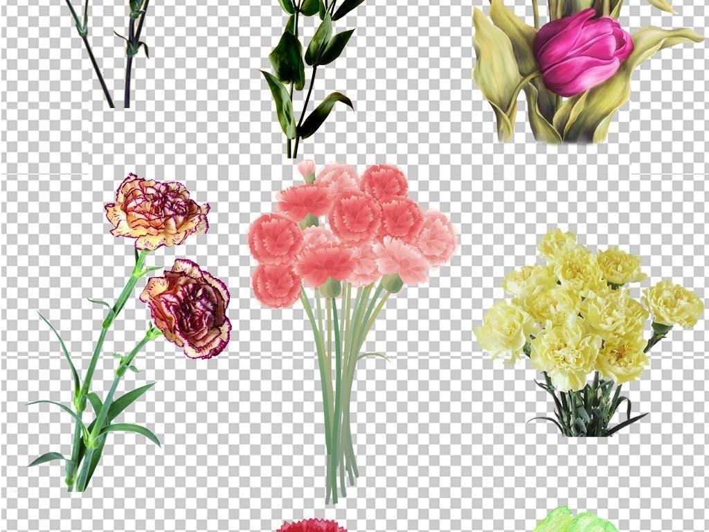 母亲节感恩节快乐粉色康乃馨花朵海报素材