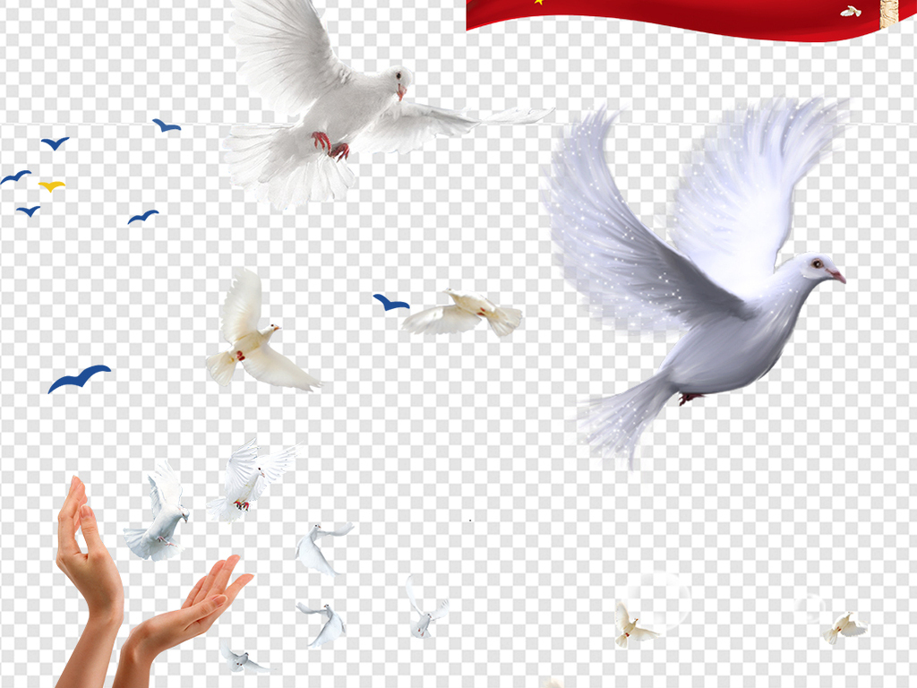 放飞梦想飞翔的白鸽鸽子信鸽素材图片下载png素材 动物图片