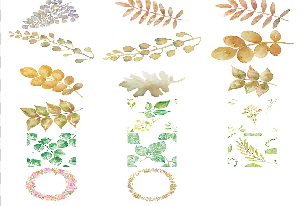 68个清新绿色森系手绘水彩风叶子卡片图案