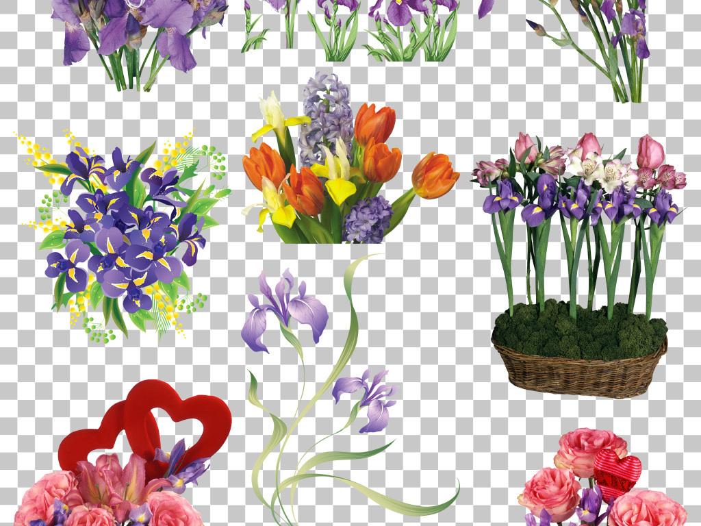 紫色花朵手绘花卉鸢尾花免抠png素材
