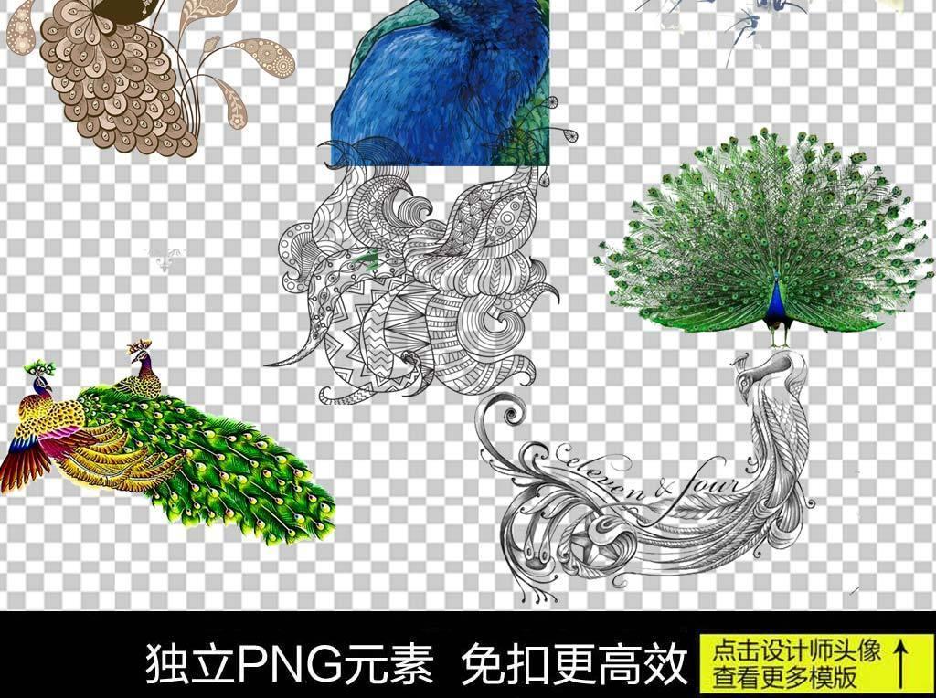 手绘线描孔雀装饰画PNG素材图片下载png素材 装饰图案