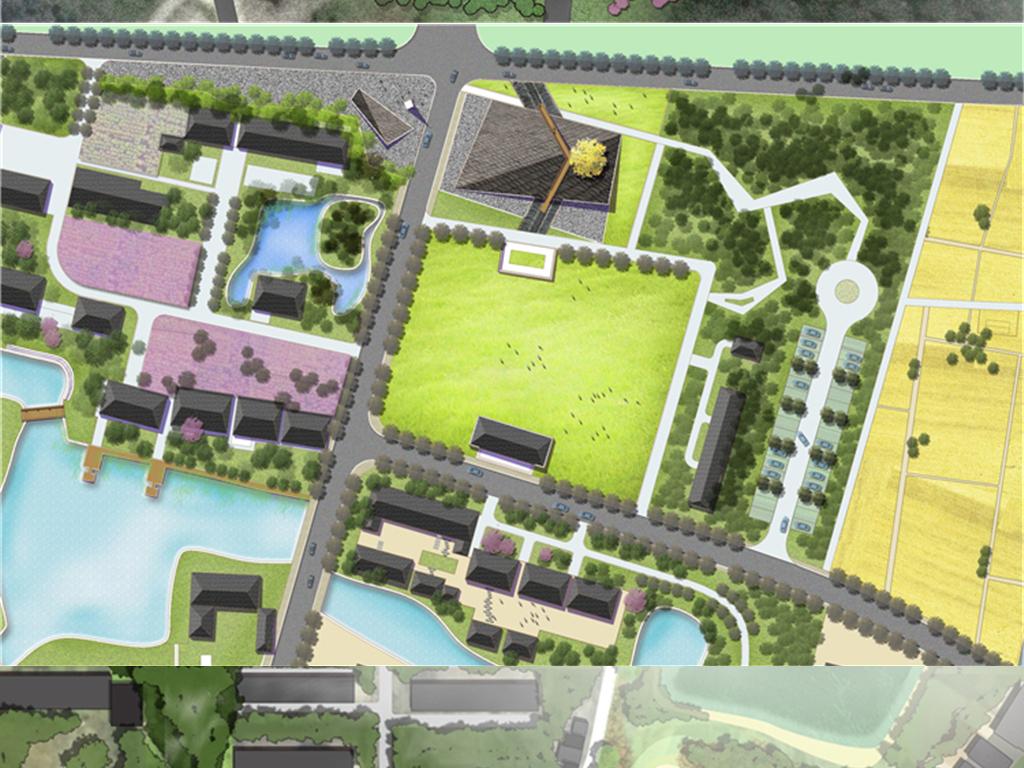 田野美丽乡村景观设计彩色平面图psd分层图