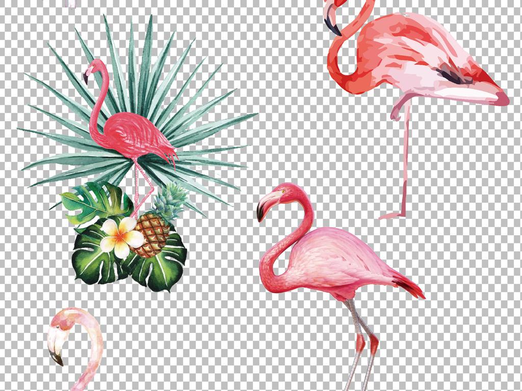 水彩手绘鸟类火烈鸟小鸟麻雀鹦鹉