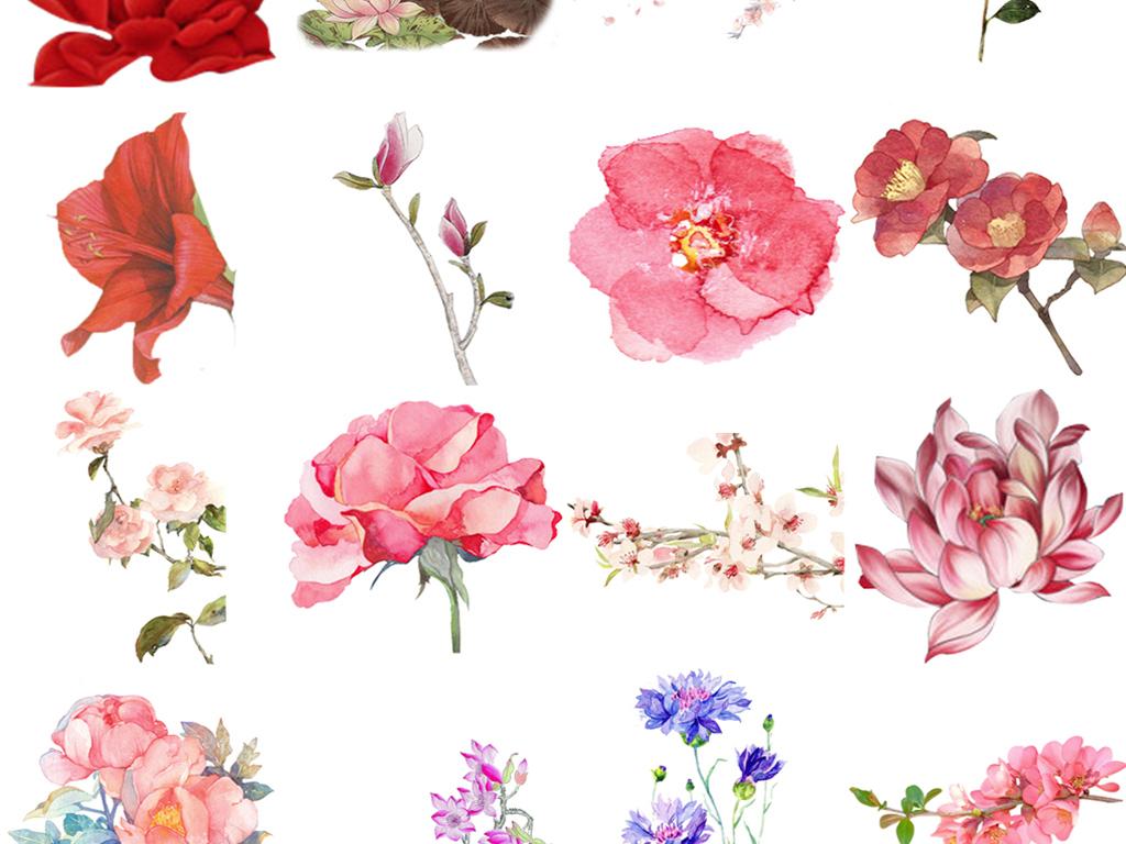 50款古风手绘花纹花朵png免扣素材