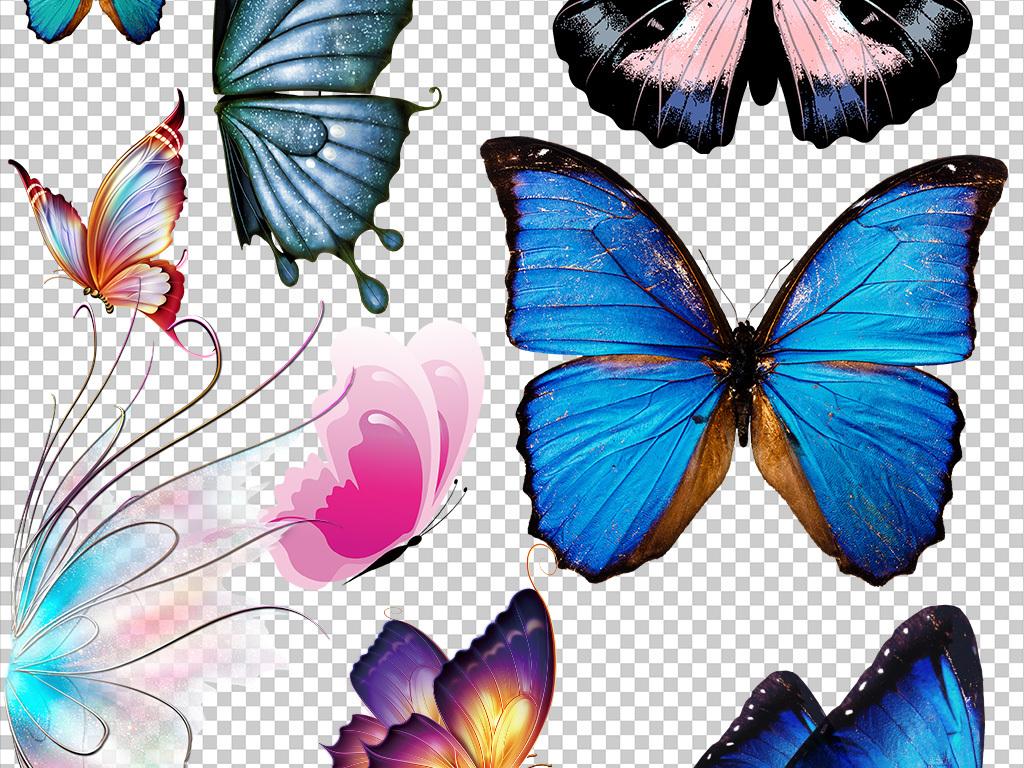 50款水墨蝴蝶手绘蝴蝶彩色蝴蝶