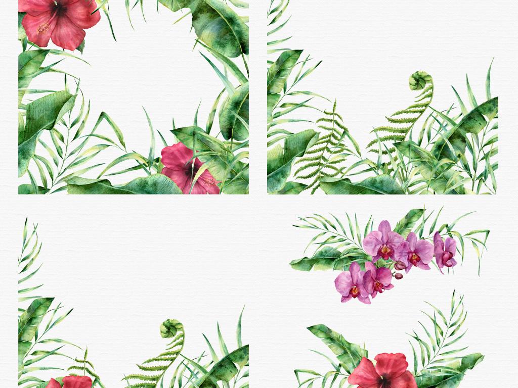 手绘水彩热带植物边框纹理png素材