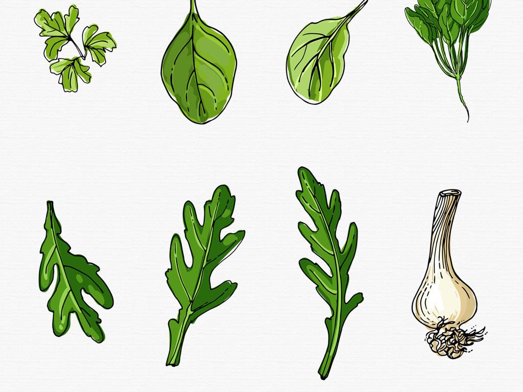 手绘水彩草本植物香料蔬菜坚果png素材