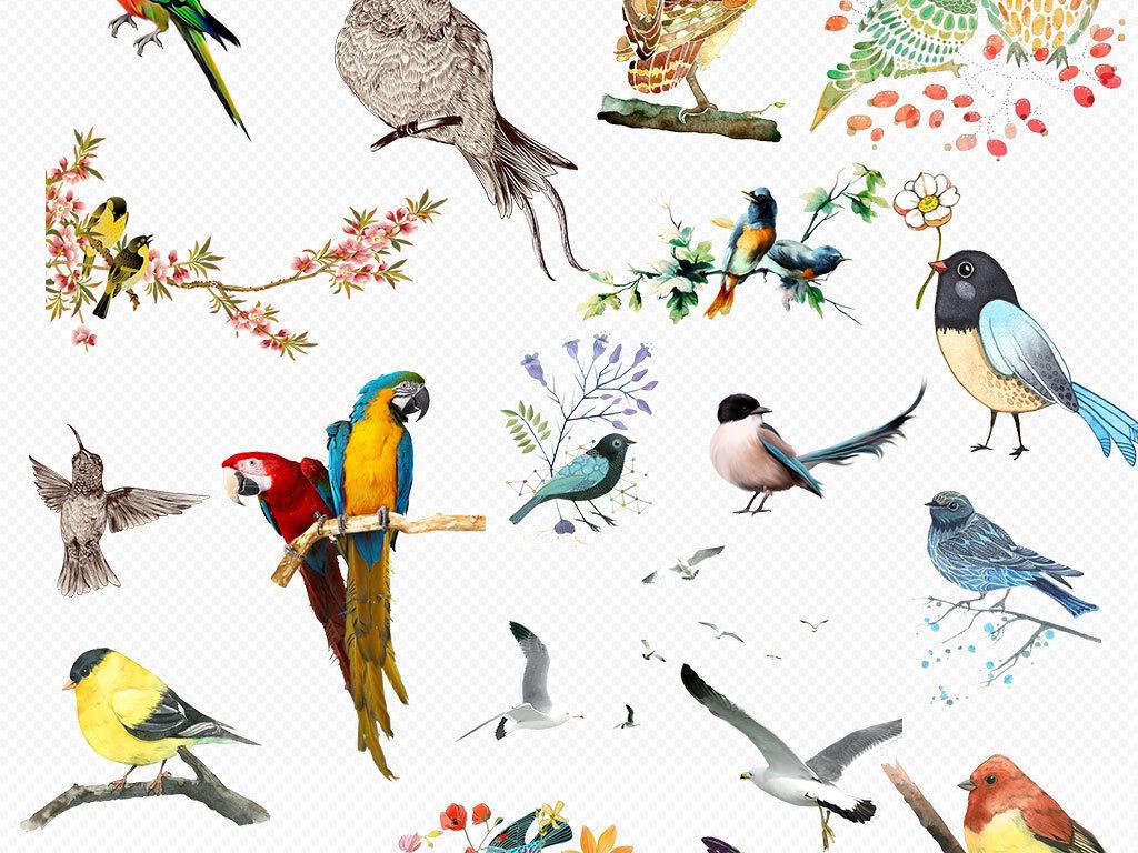 水彩手绘鸟类火烈鸟小鸟麻雀png