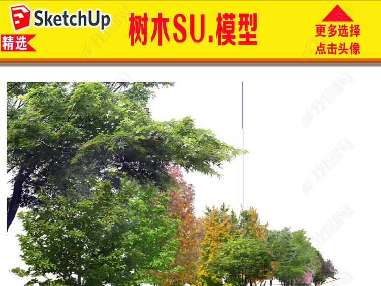园林树木SU模型