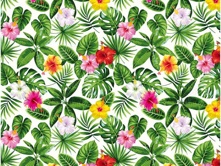 2018夏季女装印花热带风情植物芭蕉叶绿叶植